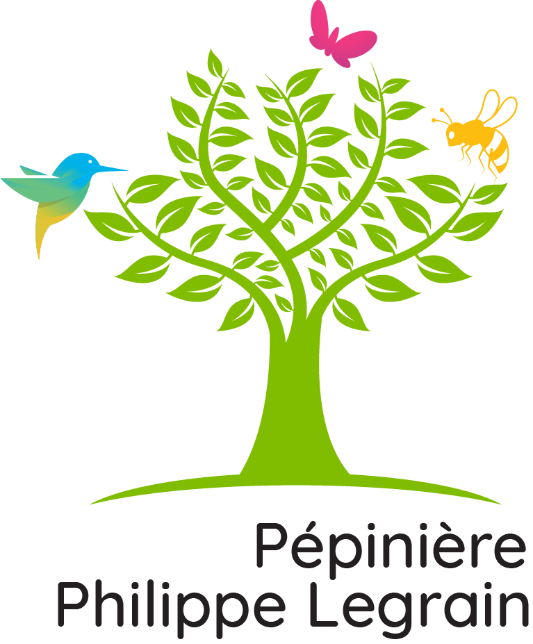 logo pepiniere philippe legrain rongy-creation